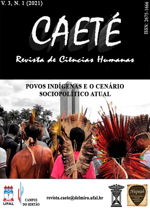 Visualizar v. 3 n. 1 (2021): Povos indígenas e o cenário sócio político atual